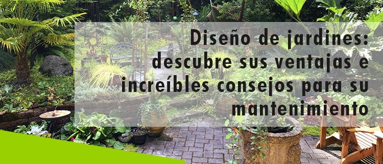 Erisa - Conoce las ventajas y consejos para manteniendo de jardines - banner