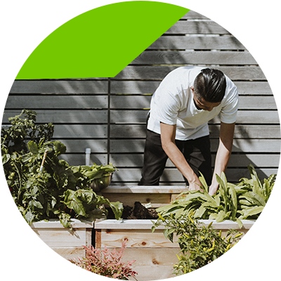 Erisa - Diseño de Jardines - Ahora está listo para el diseño de jardin