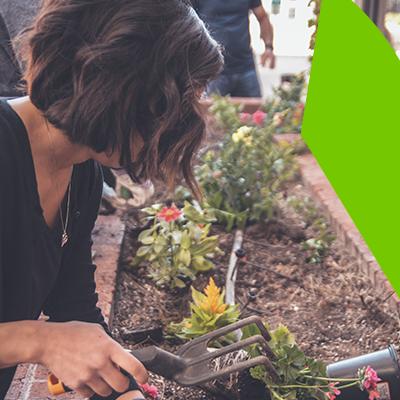 Erisa - Elija calidad a la hora para su diseño de jardin