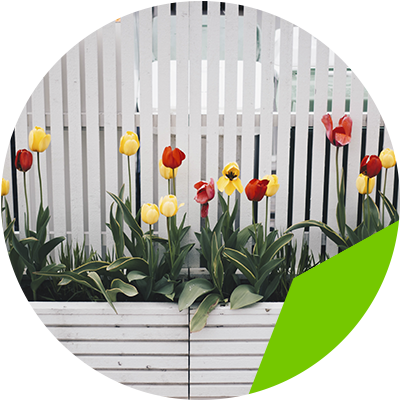 Erisa-29 ideas para jardines pequeños-12-Jardines coloridos