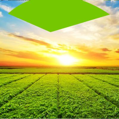 Erisa-Cómo encontrar el terreno perfecto para su casa-Tierras de cultivo