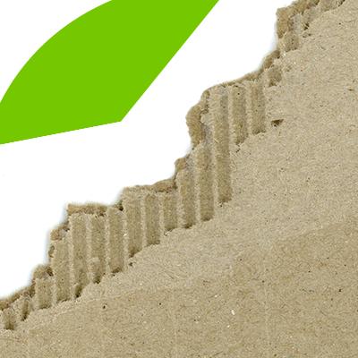 Erisa-Elementos que no pueden faltar en una vivienda sustentable-Cartón