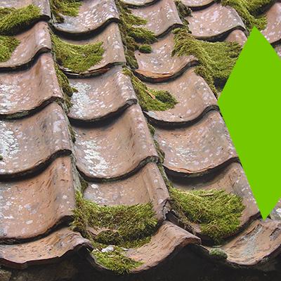 Erisa-Aspectos importantes que debe tener en cuenta a la hora de sustituir su tejado-Señales de que necesita una sustitución del tejado