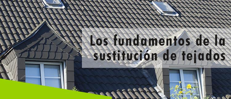 Erisa-Los fundamentos de la sustitución de tejados-Banner